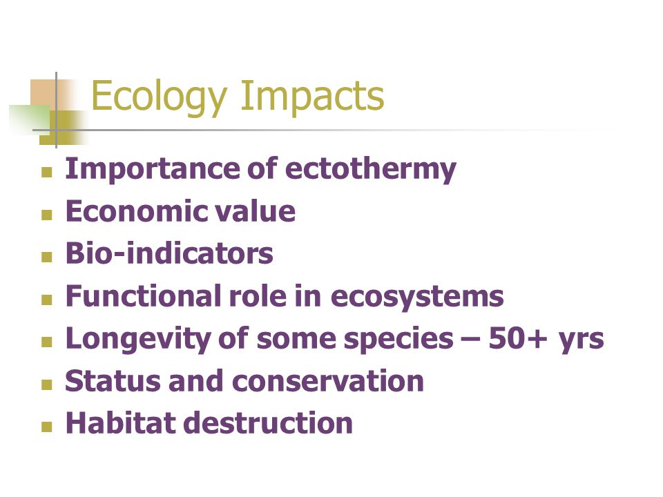 Ecology Impacts Importance of ectothermy Economic value Bio-indicators Functional role in ecosystems Longevity of some species – 50+ yrs Status and conservation Habitat destruction