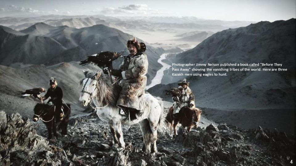 This is one of the winners from the Smithsonian s Wilderness Forever photography competition.