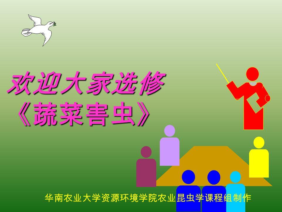 欢迎大家选修 《蔬菜害虫》 华南农业大学资源环境学院农业昆虫学课程组制作