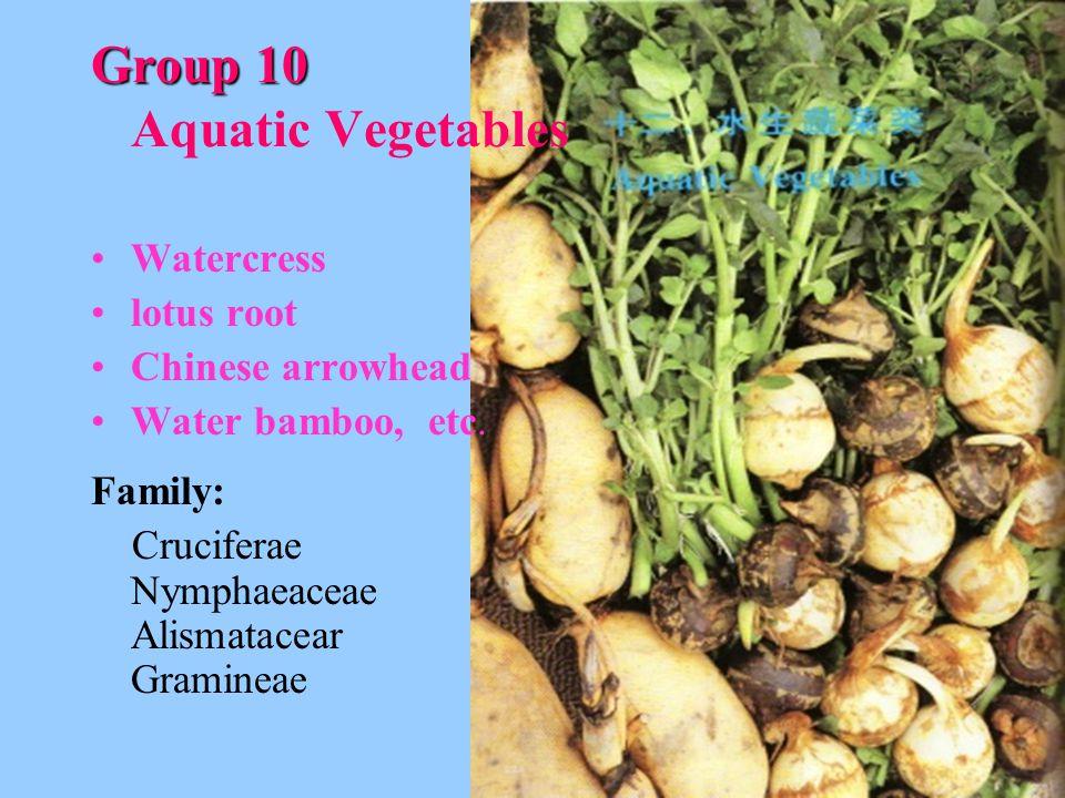 Group 10 Group 10 Aquatic Vegetables Watercress lotus root Chinese arrowhead Water bamboo, etc.