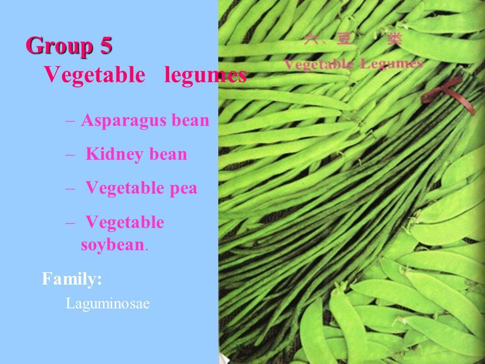 Group 5 Group 5 Vegetable legumes –Asparagus bean – Kidney bean – Vegetable pea – Vegetable soybean.