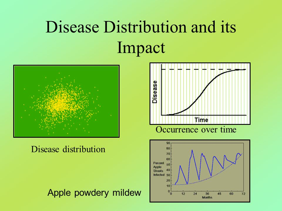 Disease Distribution and its Impact Disease distribution Occurrence over time Apple powdery mildew