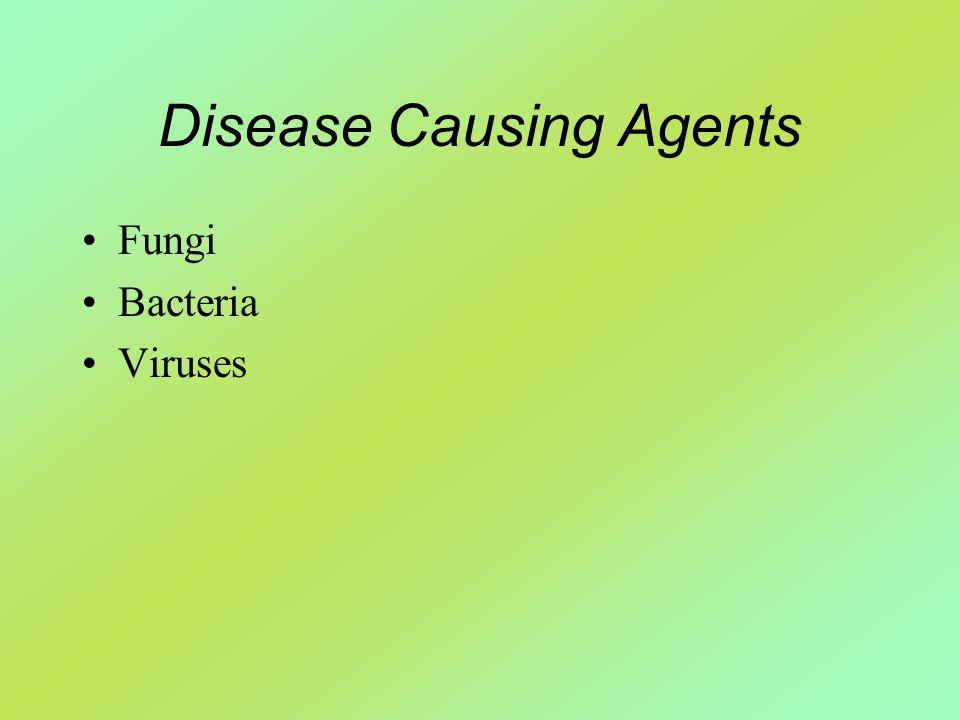 Disease Causing Agents Fungi Bacteria Viruses
