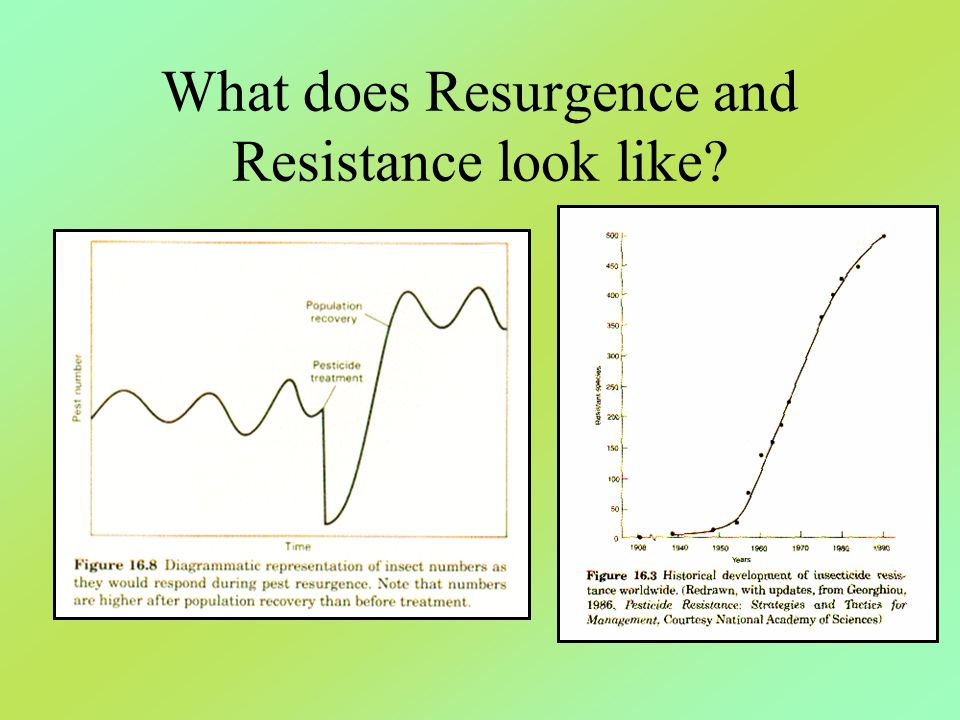 What does Resurgence and Resistance look like?