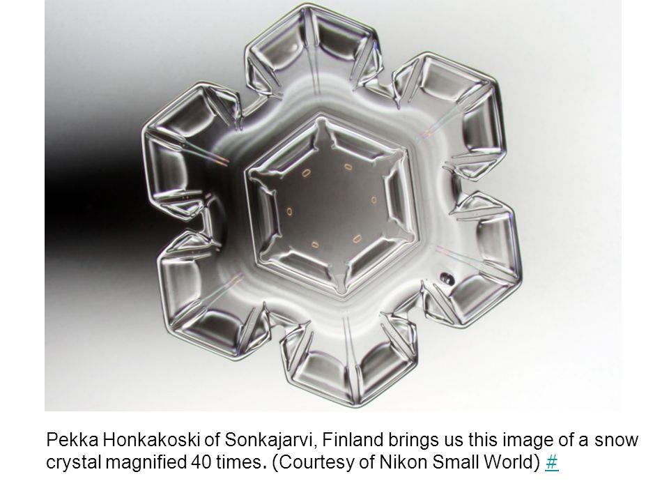Pekka Honkakoski of Sonkajarvi, Finland brings us this image of a snow crystal magnified 40 times.