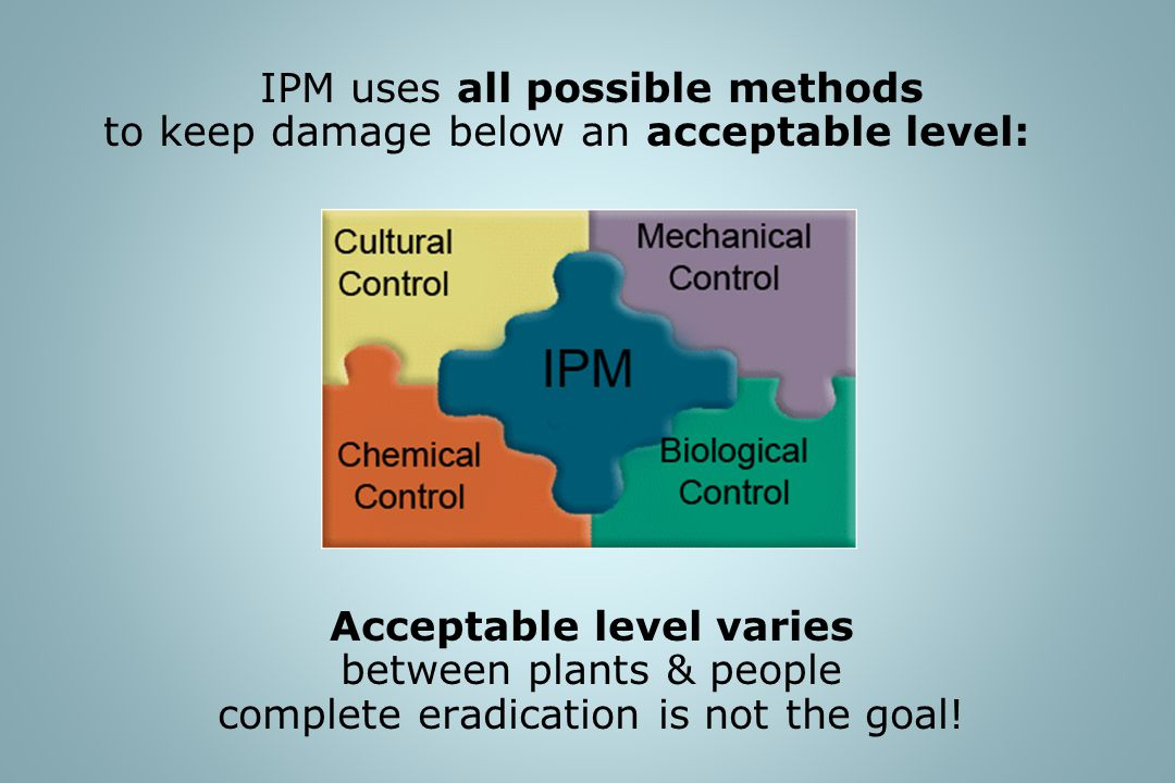 IPM uses all possible methods to keep damage below an acceptable level: Acceptable level varies between plants & people complete eradication is not th