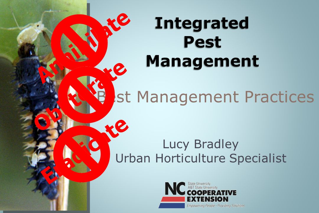 Lucy Bradley Urban Horticulture Specialist Best Management Practices Annihilate Obliterate Eradicate