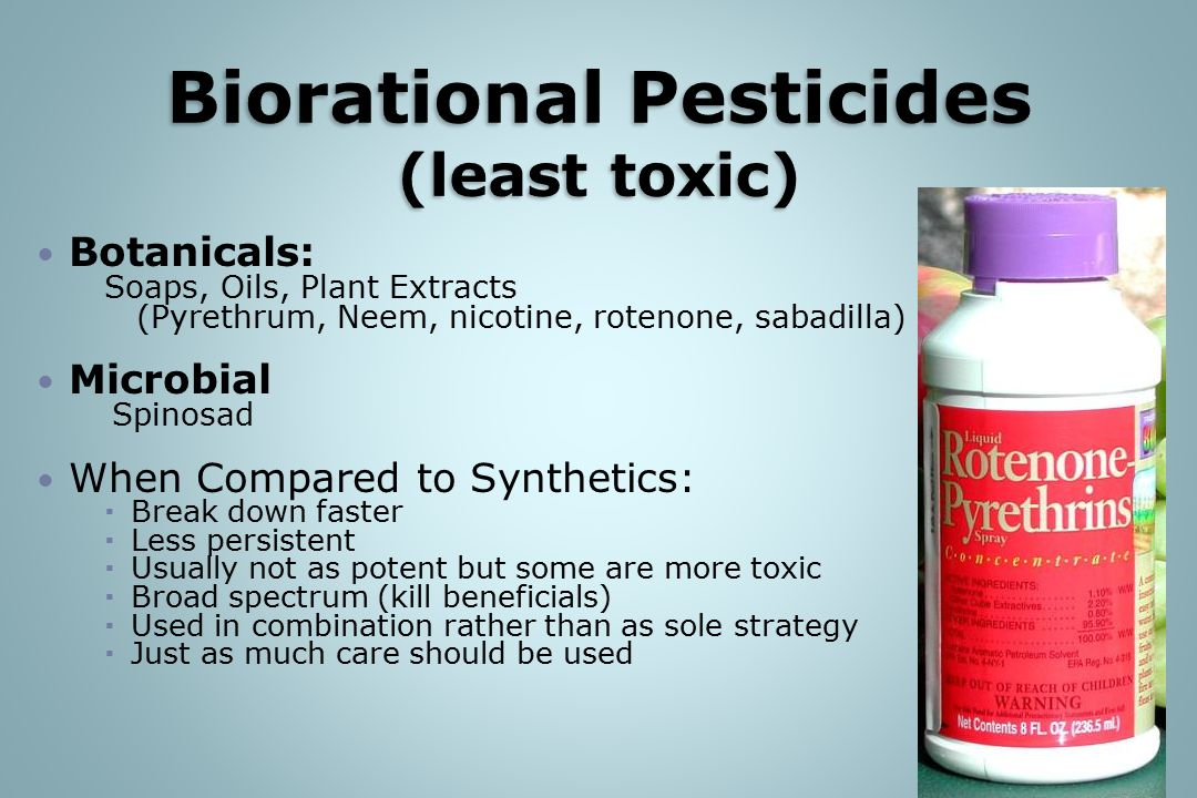 Botanicals: Soaps, Oils, Plant Extracts (Pyrethrum, Neem, nicotine, rotenone, sabadilla) Microbial Spinosad When Compared to Synthetics:  Break down