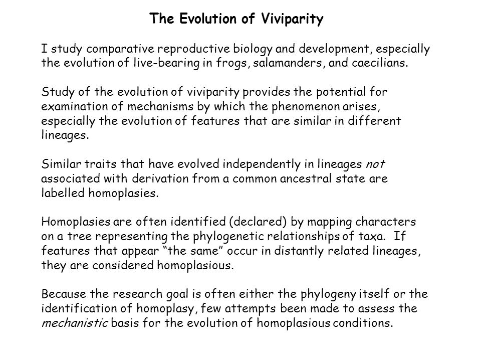 The Evolution of Viviparity I study comparative reproductive biology and development, especially the evolution of live-bearing in frogs, salamanders,
