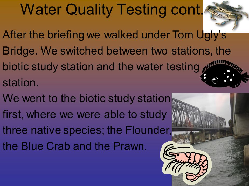 Water Quality Testing cont.After the briefing we walked under Tom Ugly's Bridge.