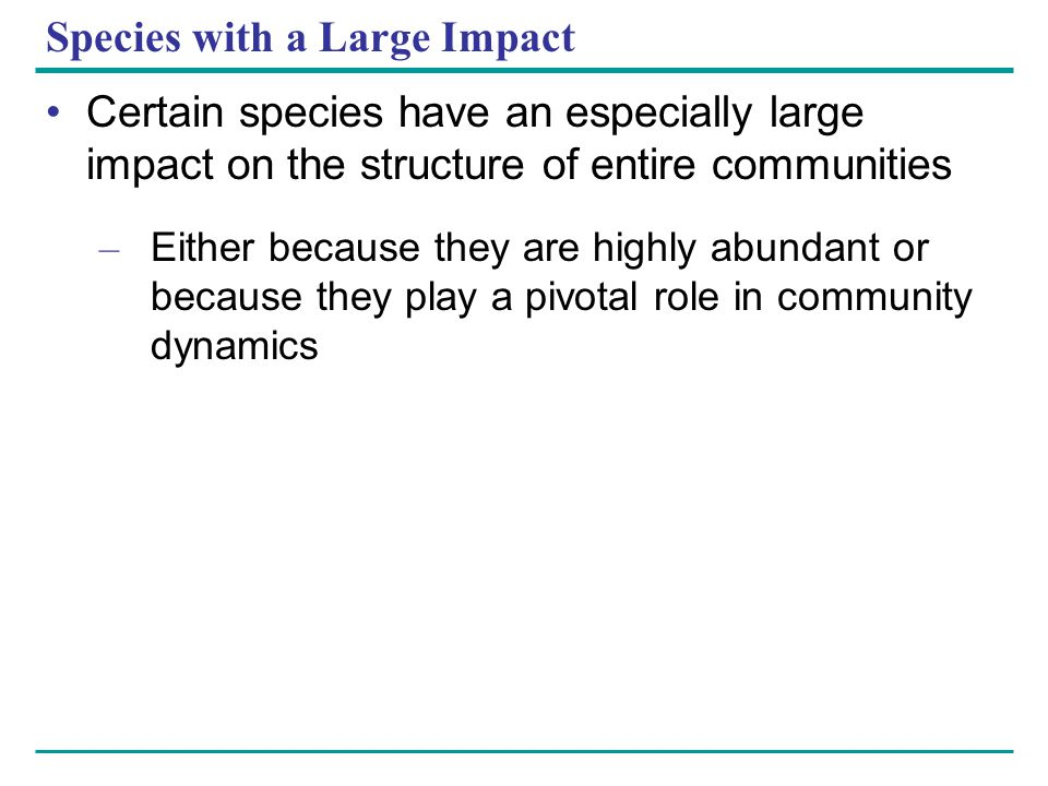 Species with a Large Impact Certain species have an especially large impact on the structure of entire communities – Either because they are highly ab