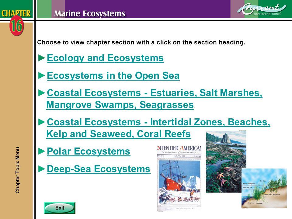 MenuPreviousNext 16 - 42 Estuaries nSome factors limit productivity in estuaries.