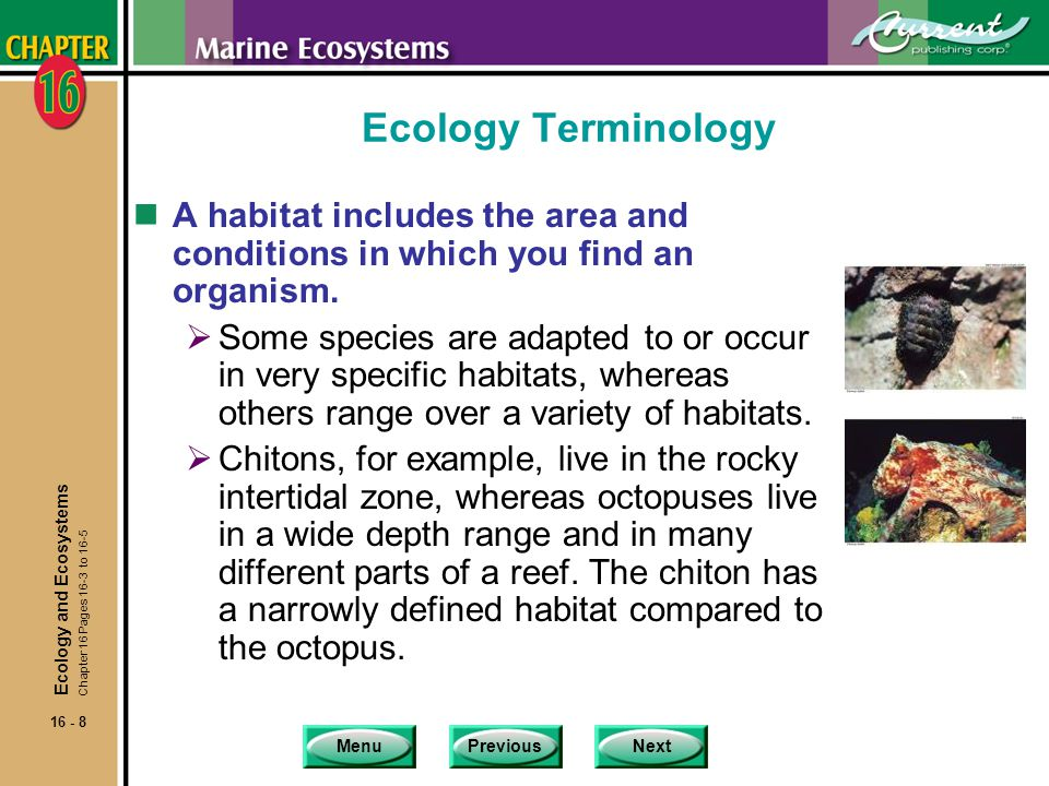 MenuPreviousNext 16 - 9 Ecology Terminology nA microhabitat exists on a very small scale.