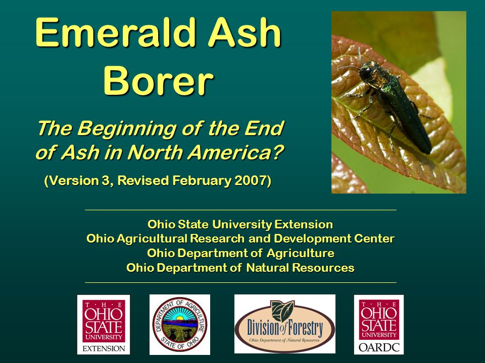Emerald Ash Borer The Beginning of the End of Ash in North America? (Version 3, Revised February 2007) Ohio State University Extension Ohio Agricultur
