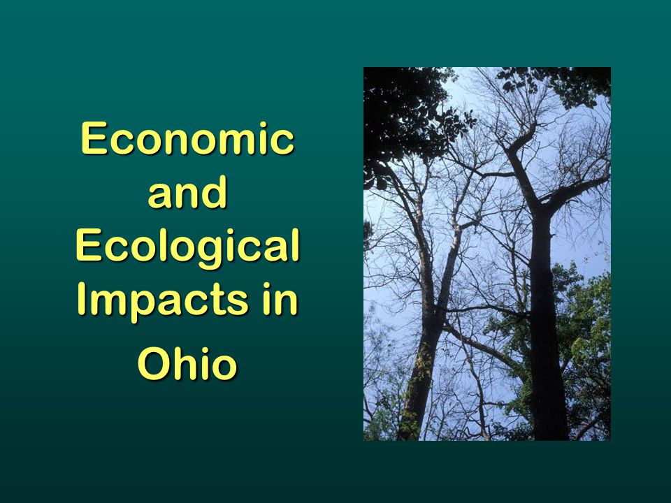 Economic and Ecological Impacts in Ohio