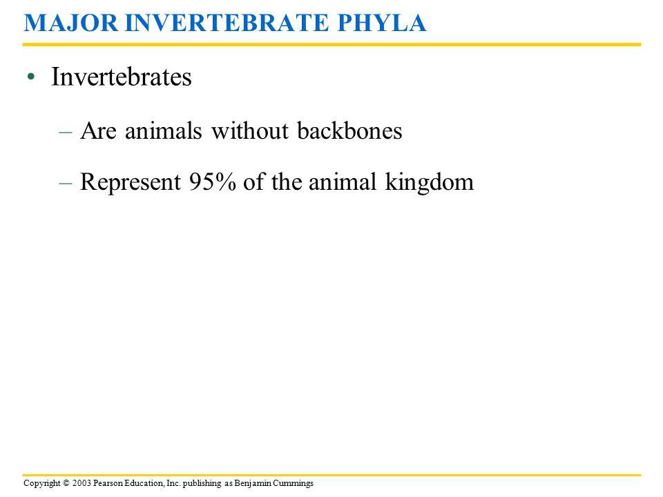 Copyright © 2003 Pearson Education, Inc. publishing as Benjamin Cummings Invertebrates MAJOR INVERTEBRATE PHYLA –Are animals without backbones –Repres