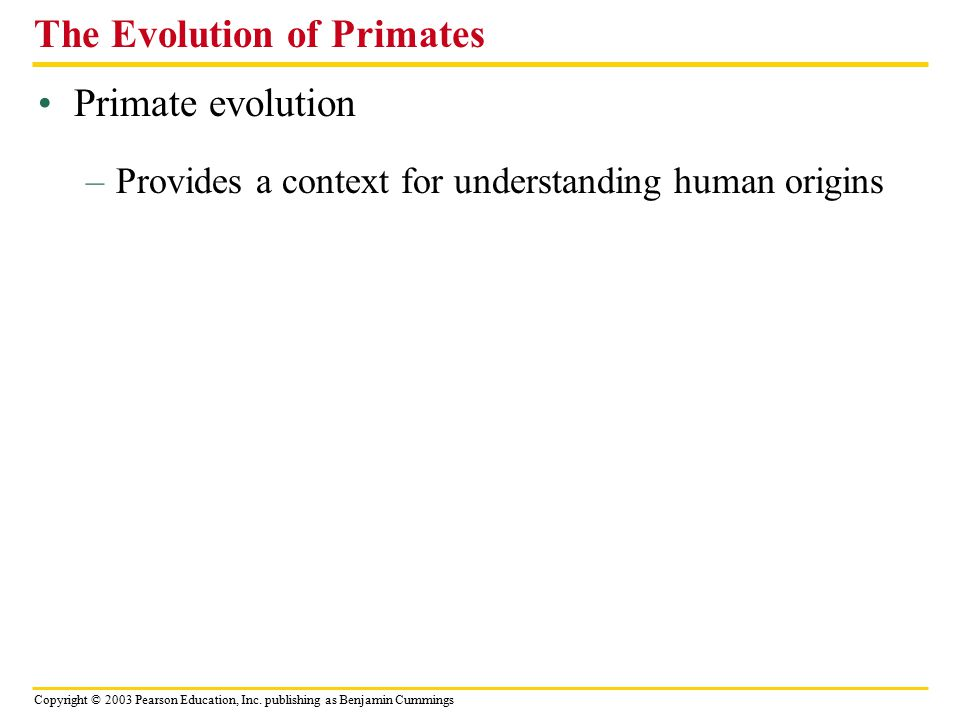 Copyright © 2003 Pearson Education, Inc. publishing as Benjamin Cummings Primate evolution The Evolution of Primates –Provides a context for understan