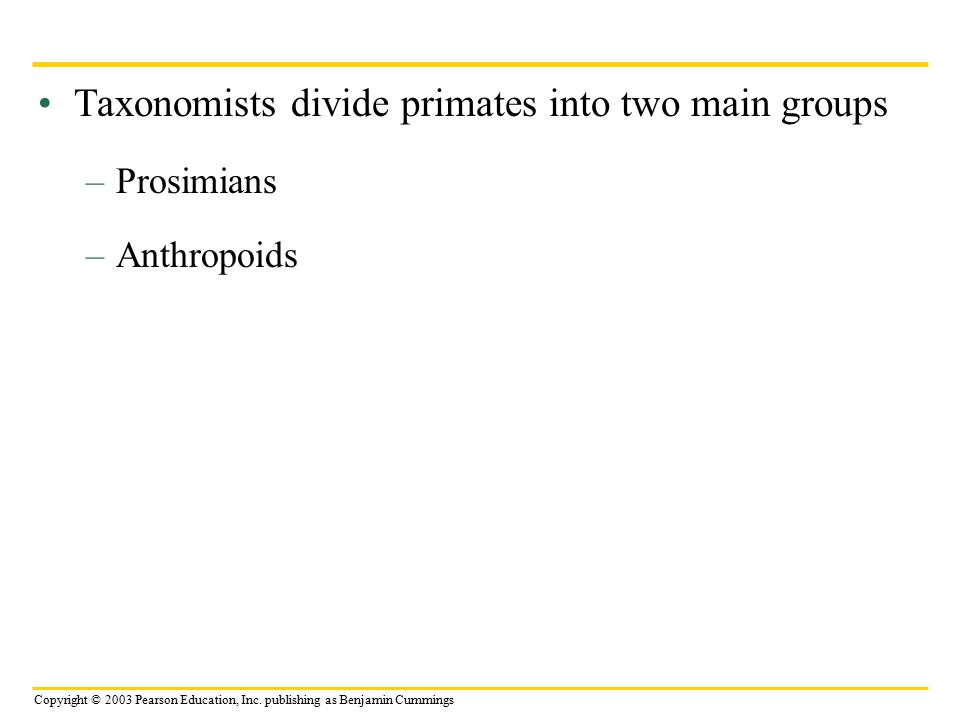 Copyright © 2003 Pearson Education, Inc. publishing as Benjamin Cummings Taxonomists divide primates into two main groups –Prosimians –Anthropoids