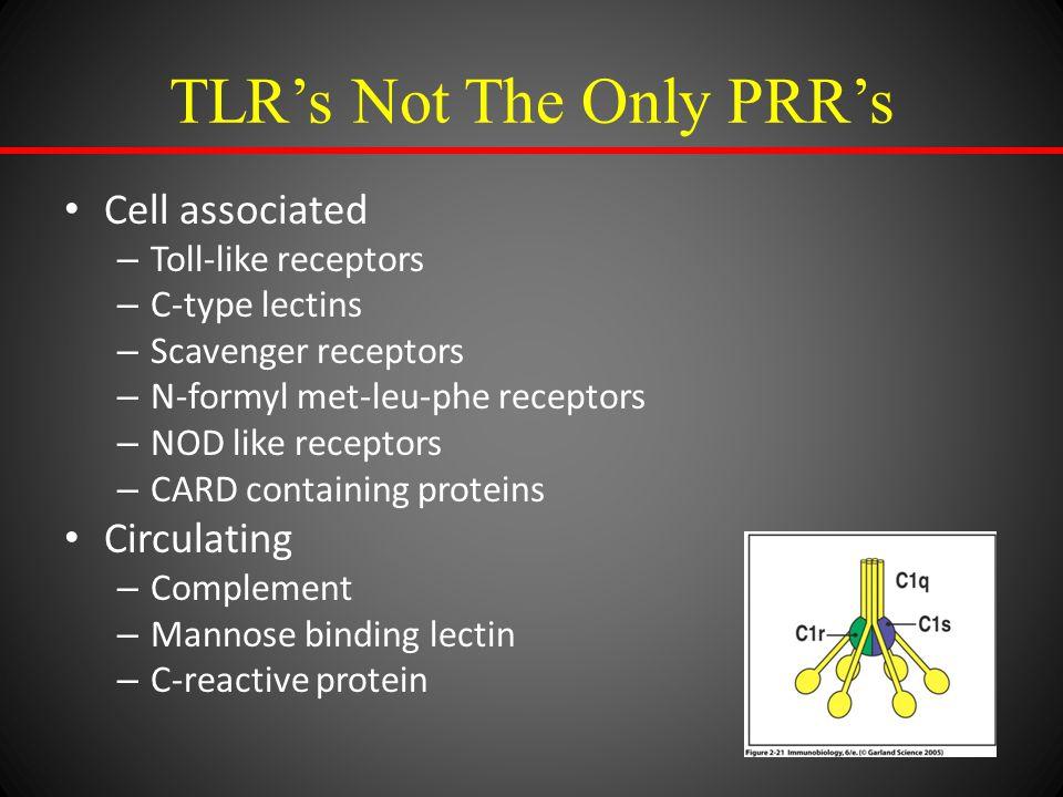TLR's Not The Only PRR's Cell associated – Toll-like receptors – C-type lectins – Scavenger receptors – N-formyl met-leu-phe receptors – NOD like rece