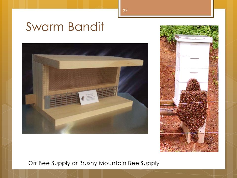 Swarm Bandit Orr Bee Supply or Brushy Mountain Bee Supply 27