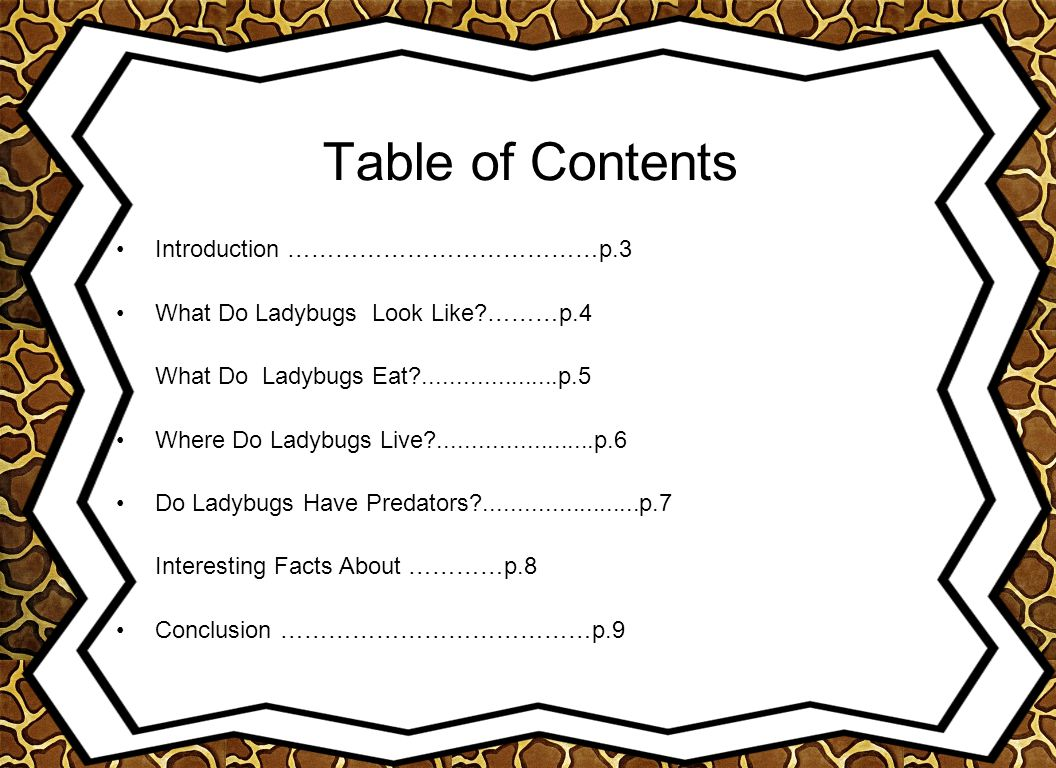 Table of Contents Introduction …………………………………p.3 What Do Ladybugs Look Like?………p.4 What Do Ladybugs Eat?....................p.5 Where Do Ladybugs Live?