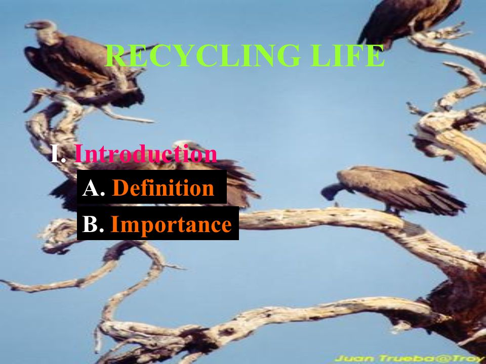 RECYCLING LIFE I. Introduction A. Definition B. Importance