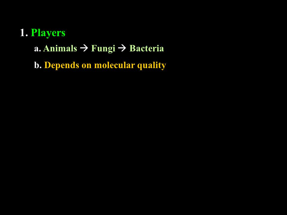 1. Players a. Animals  Fungi  Bacteria b. Depends on molecular quality