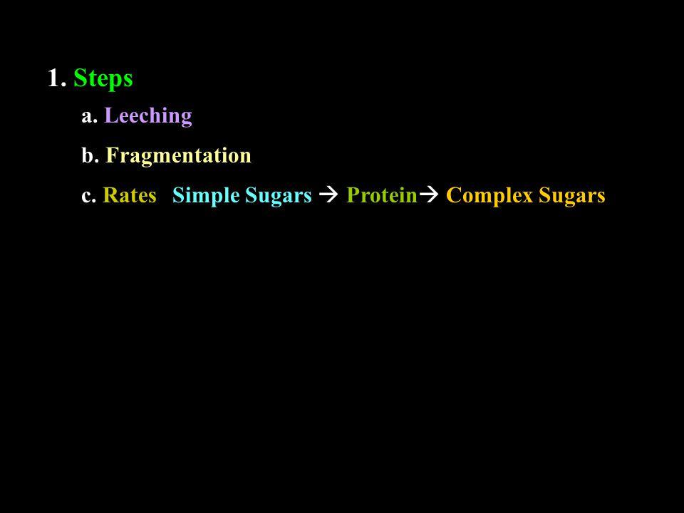 1. Steps a. Leeching b. Fragmentation c. RatesSimple Sugars  Protein  Complex Sugars