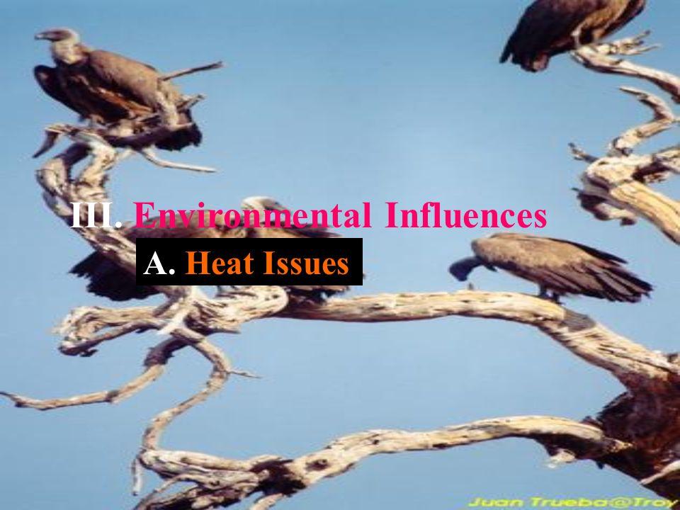 III. Environmental Influences A. Heat Issues