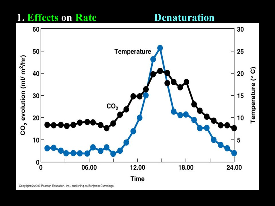 1. Effects on RateDenaturation