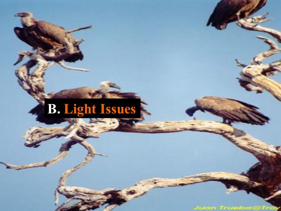 B. Light Issues