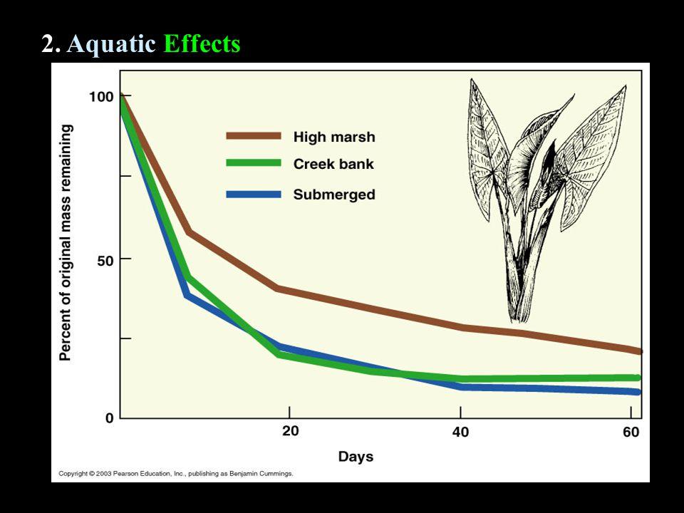 2. Aquatic Effects