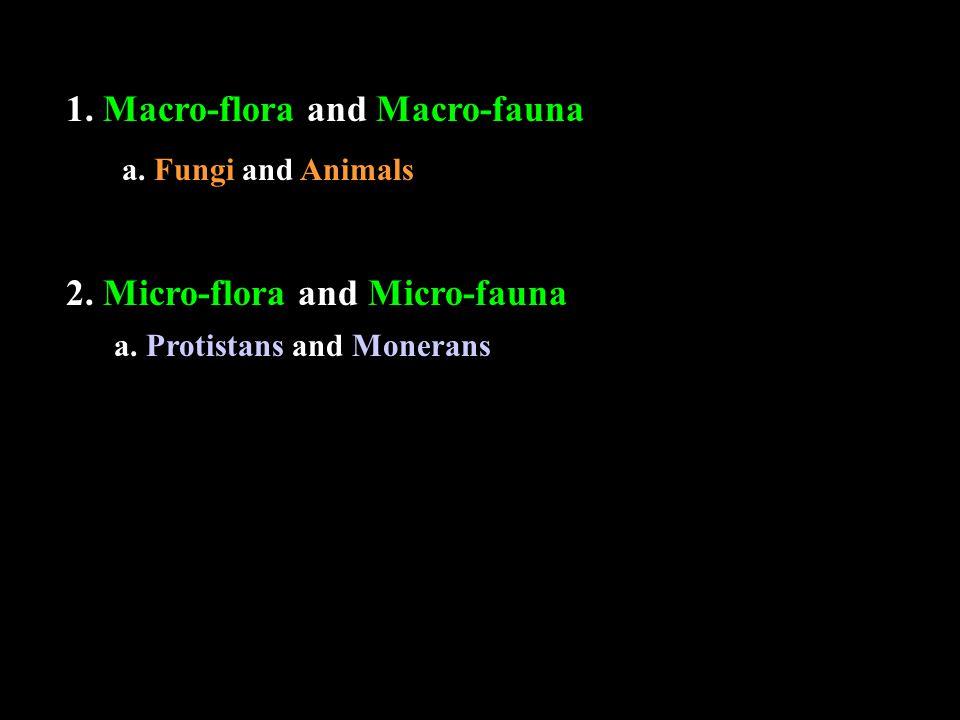 1. Macro-flora and Macro-fauna a. Protistans and Monerans 2.