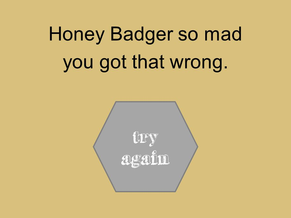Honey Badger so mad you got that wrong. try again
