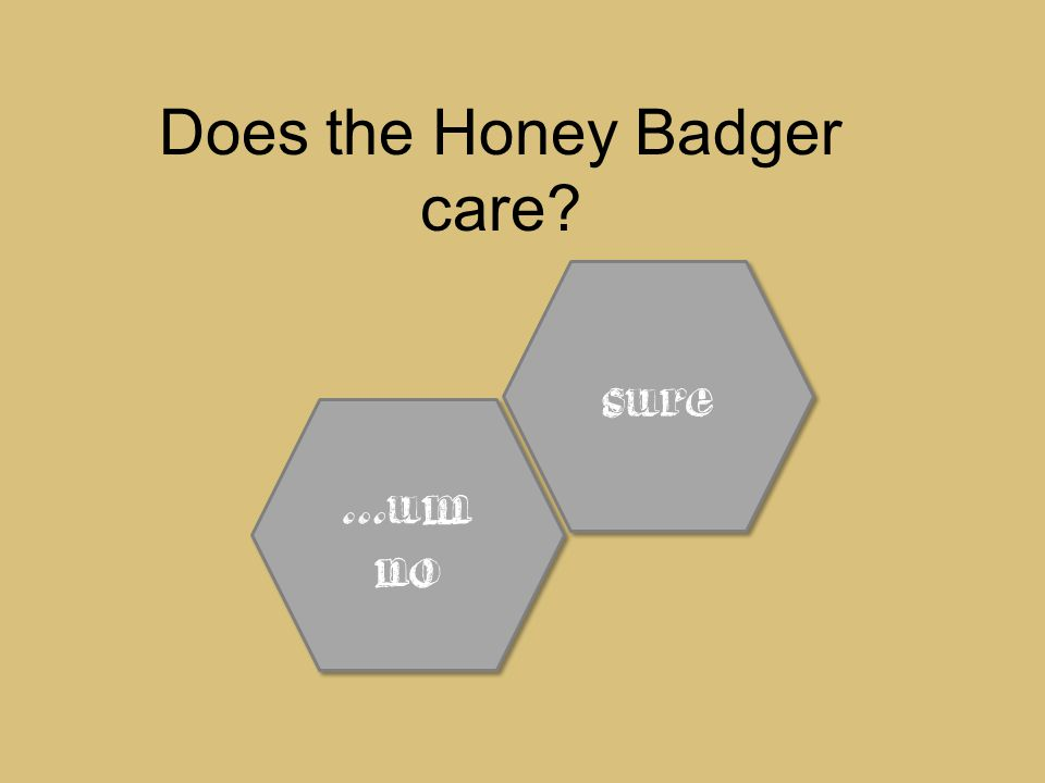 Does the Honey Badger care sure …um no …um no