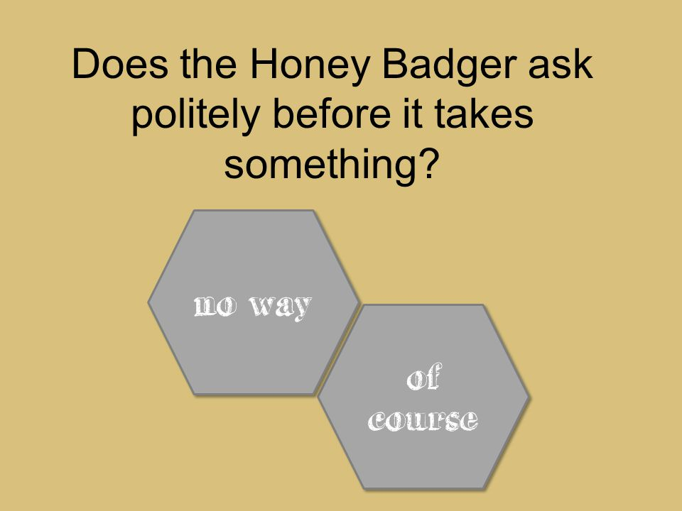 Does the Honey Badger ask politely before it takes something of course of course no way