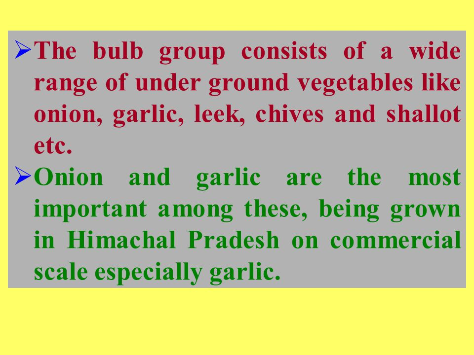  The bulb group consists of a wide range of under ground vegetables like onion, garlic, leek, chives and shallot etc.