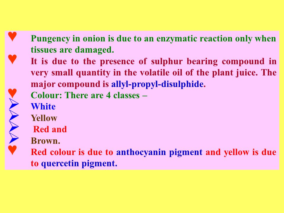 ♥ Pungency in onion is due to an enzymatic reaction only when tissues are damaged.