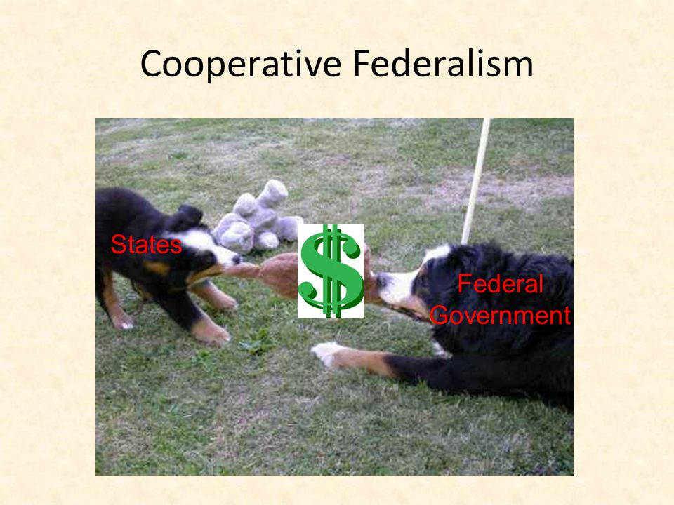 Cooperative Federalism Federal Government States