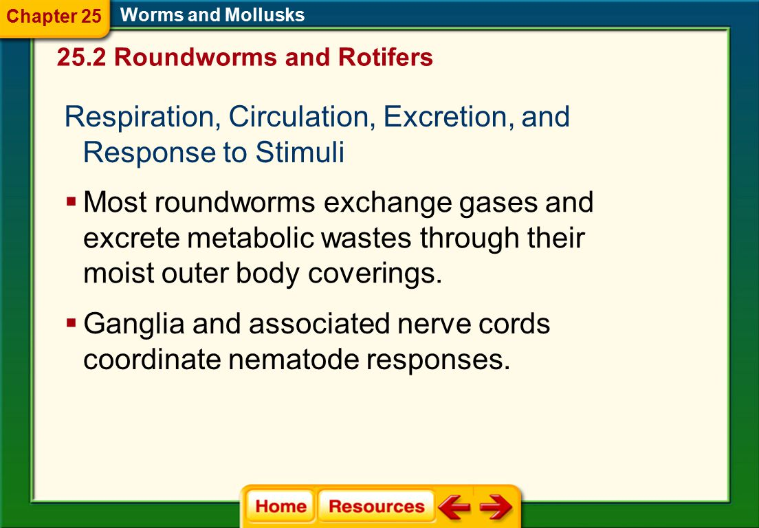 Feeding and Digestion  Most roundworms are free-living. Worms and Mollusks  The movement of food through the digestive tract is one-way. 25.2 Roundw