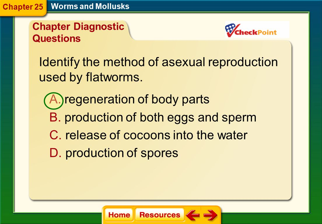 Worms and Mollusks Chapter Resource Menu Chapter Diagnostic Questions Formative Test Questions Chapter Assessment Questions Standardized Test Practice
