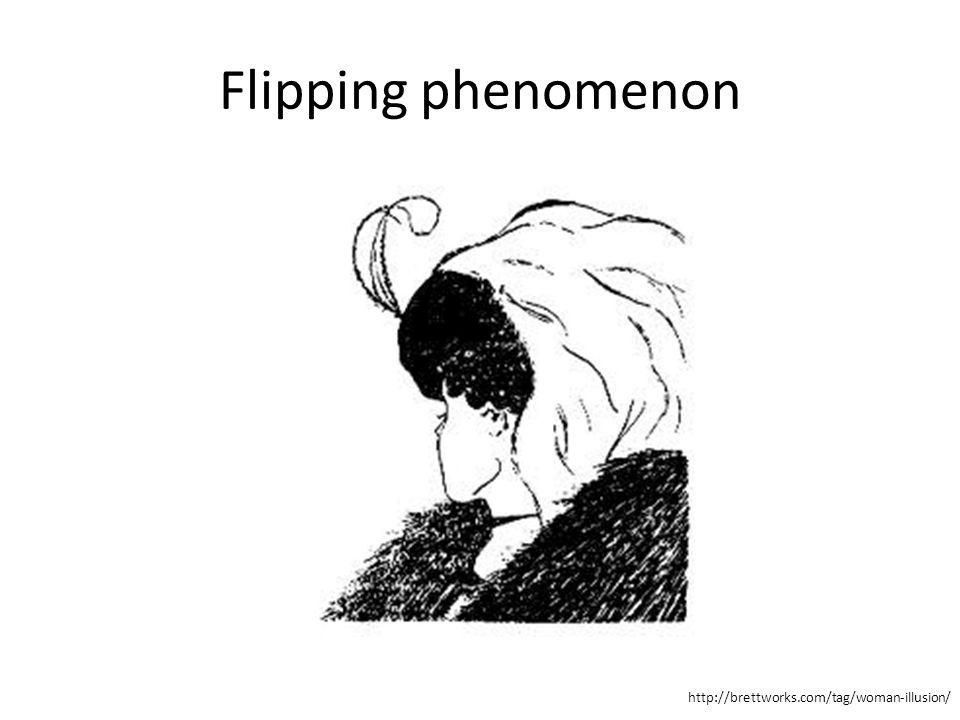Flipping phenomenon http://brettworks.com/tag/woman-illusion/