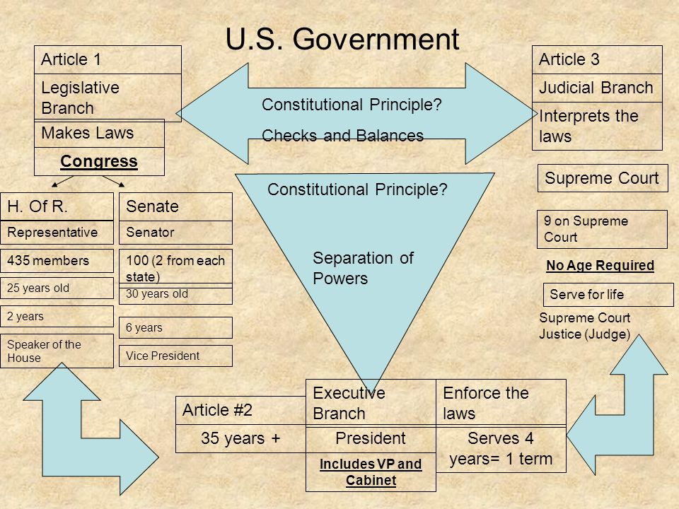 U.S. Government Congress Makes Laws Legislative Branch H. Of R.Senate SenatorRepresentative 100 (2 from each state) 435 members 30 years old 25 years