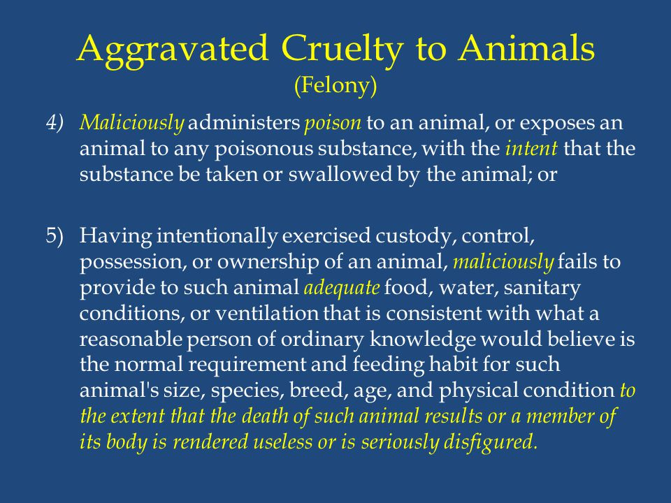 Aggravated Cruelty to Animals (Felony) 4) Maliciously administers poison to an animal, or exposes an animal to any poisonous substance, with the inten
