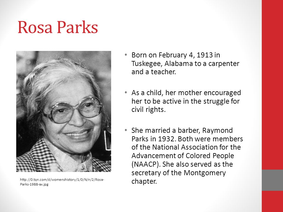 Rosa Parks Born on February 4, 1913 in Tuskegee, Alabama to a carpenter and a teacher. As a child, her mother encouraged her to be active in the strug