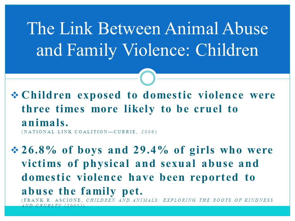  Children exposed to domestic violence were three times more likely to be cruel to animals. (NATIONAL LINK COALITION—CURRIE, 2006)  26.8% of boys an