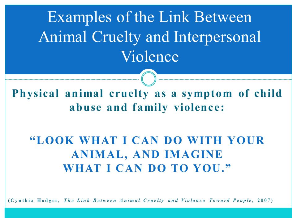 """Physical animal cruelty as a symptom of child abuse and family violence: """"LOOK WHAT I CAN DO WITH YOUR ANIMAL, AND IMAGINE WHAT I CAN DO TO YOU."""" (Cyn"""