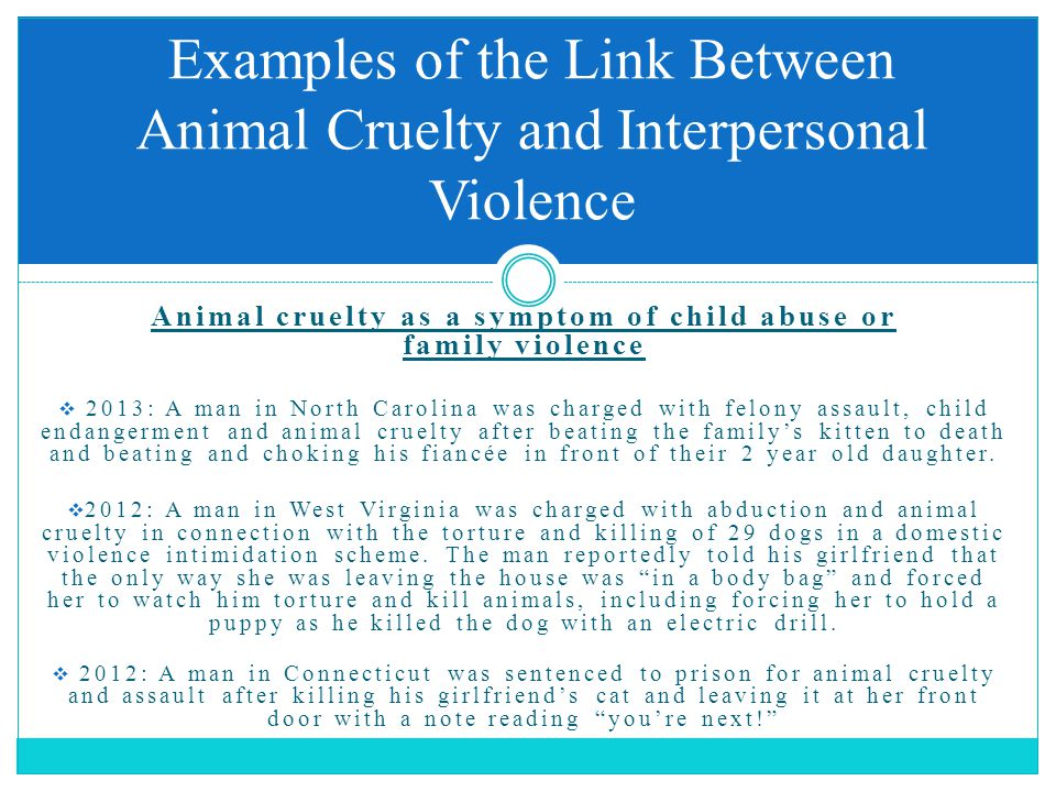 Animal cruelty as a symptom of child abuse or family violence  2013: A man in North Carolina was charged with felony assault, child endangerment and animal cruelty after beating the family's kitten to death and beating and choking his fiancée in front of their 2 year old daughter.
