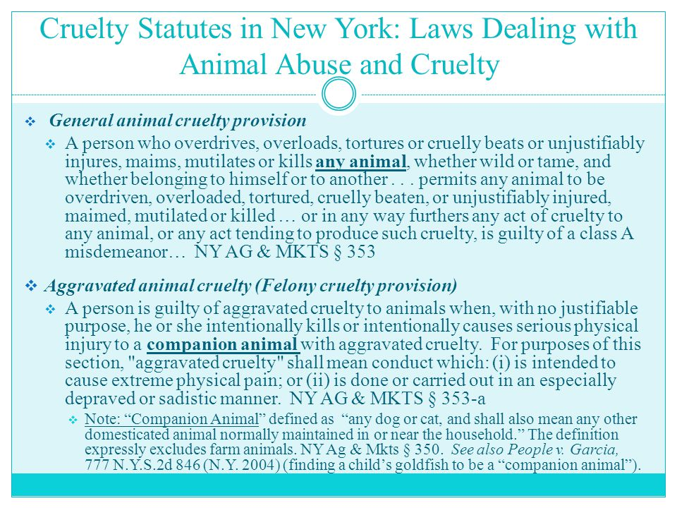 Cruelty Statutes in New York: Laws Dealing with Animal Abuse and Cruelty  General animal cruelty provision  A person who overdrives, overloads, tort