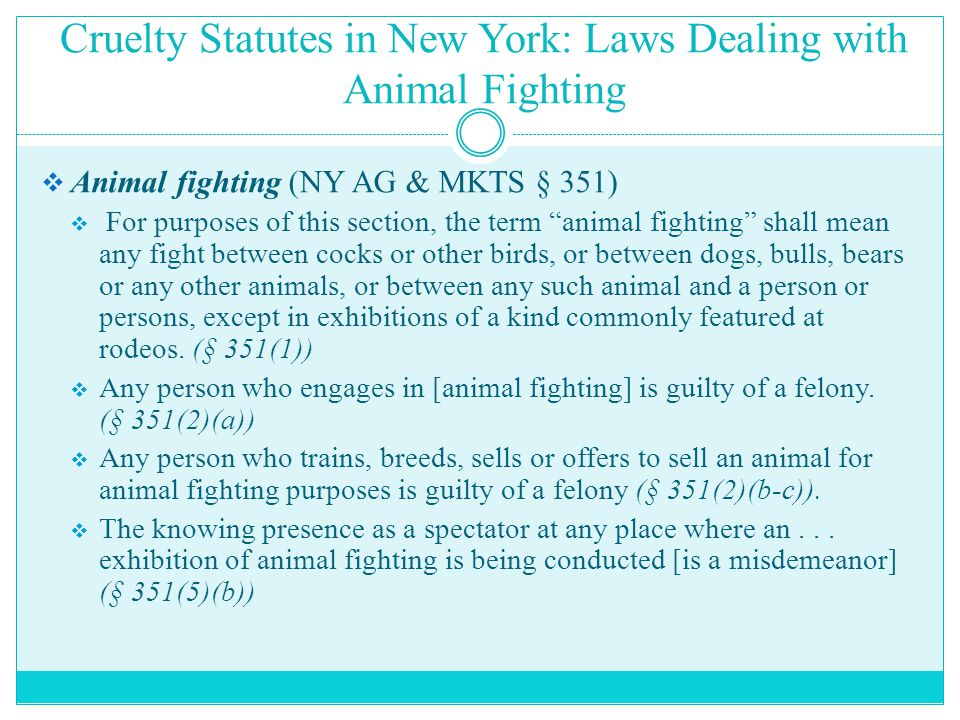 """Cruelty Statutes in New York: Laws Dealing with Animal Fighting  Animal fighting (NY AG & MKTS § 351)  For purposes of this section, the term """"anima"""